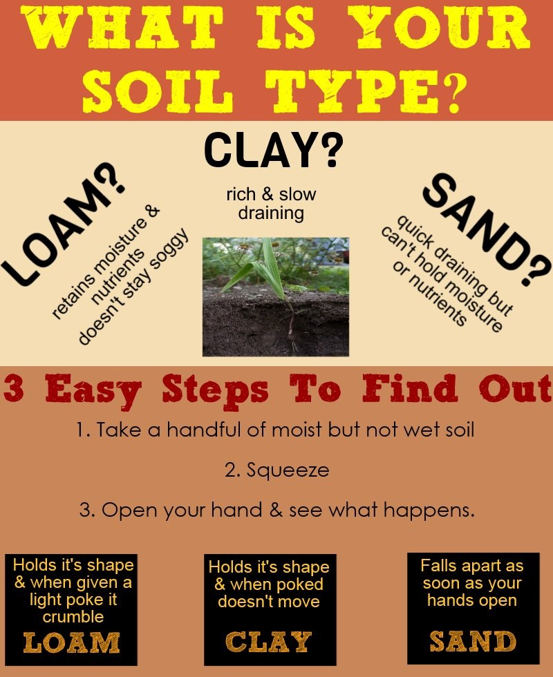 What Is your Soil Type?