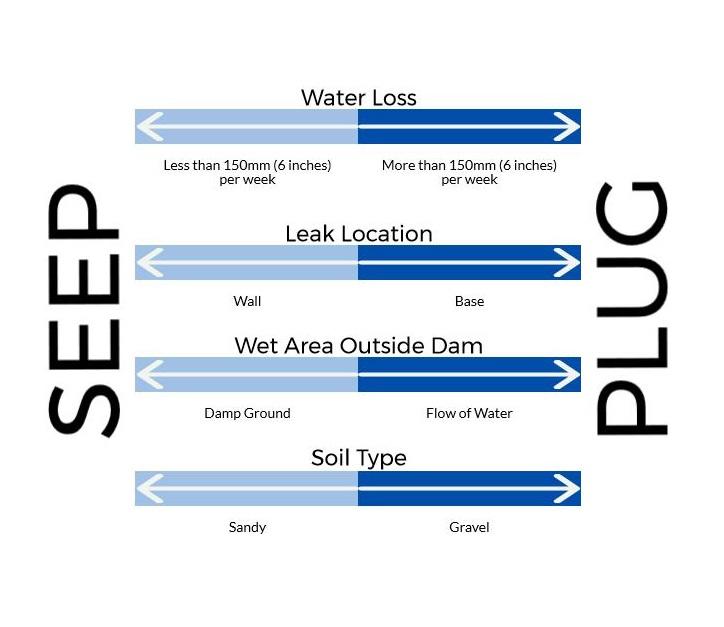 Dam Sealer – Plug or Seep?