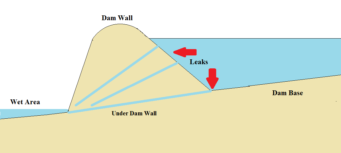 Signs Your Dam or Pond Is Leaking